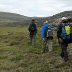Three men walking on tundra