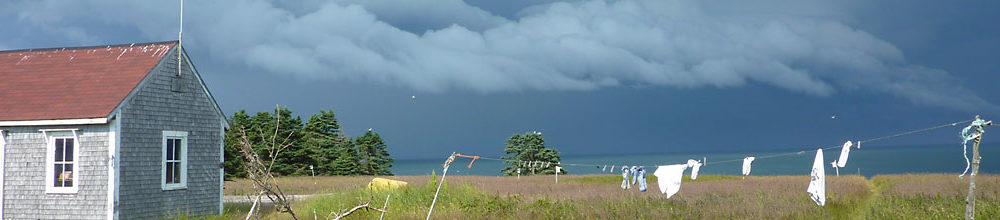 Kent Island landscape